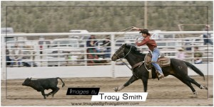 Calf roping Tri-County High School Rodeo